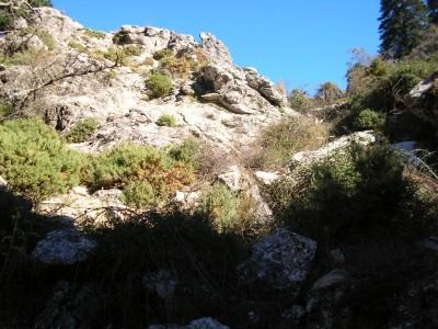 Sierra_de_las_Nieves_015.JPG