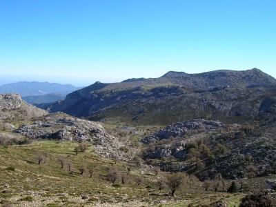 Sierra_de_las_Nieves_041.JPG