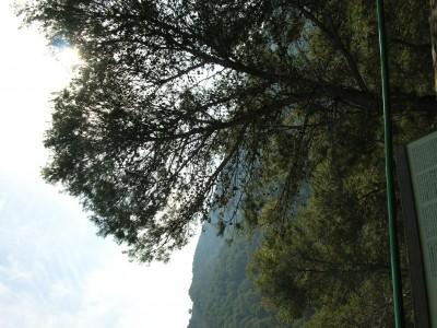 Contadoras_Torrijos_063.JPG