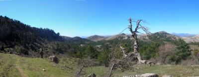 Cañada_cuerno_y_cortijo.JPG