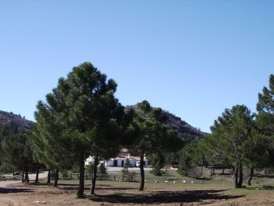 Quejigales_Torrecilla_189.JPG