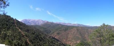 panoramic_7.JPG